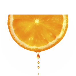 juice from an orange symbolizes our juicy learning philosophy